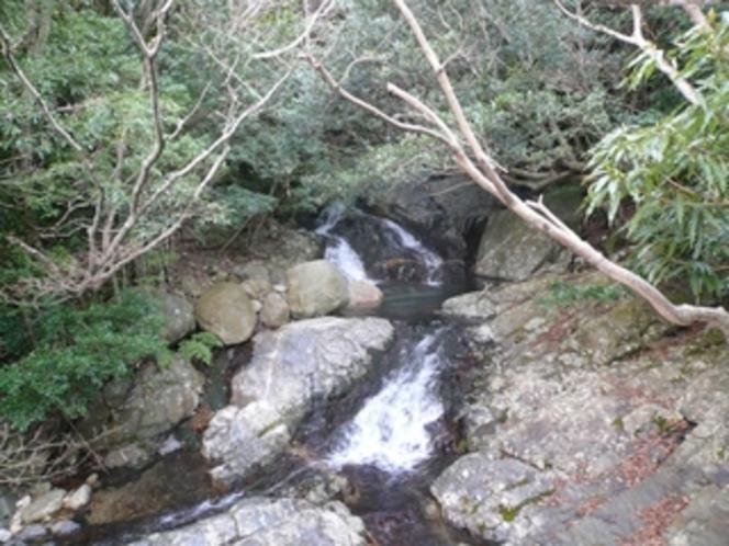 林道脇の癒しスポット