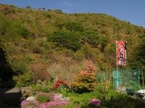 【恵山】旅館は恵山中腹に位置