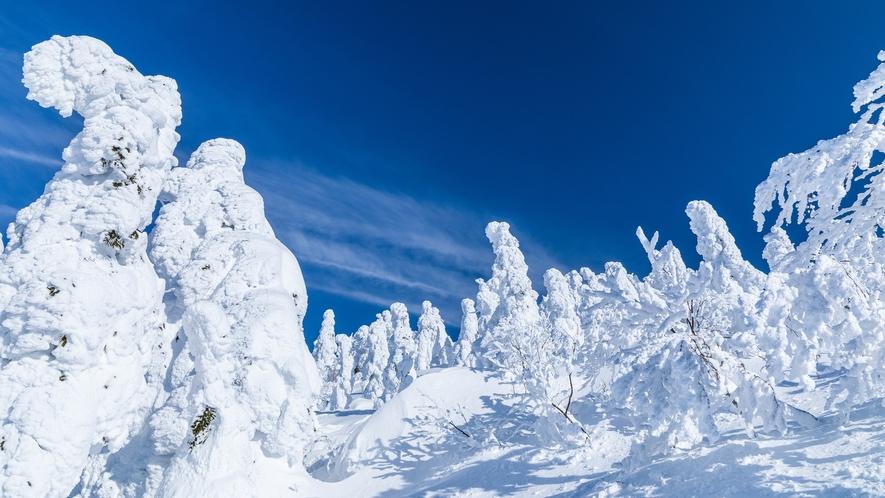 *【周辺観光】森吉山の樹氷
