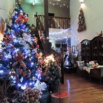 *【ロビー】クリスマスには大きなツリーが皆様をお出迎え☆