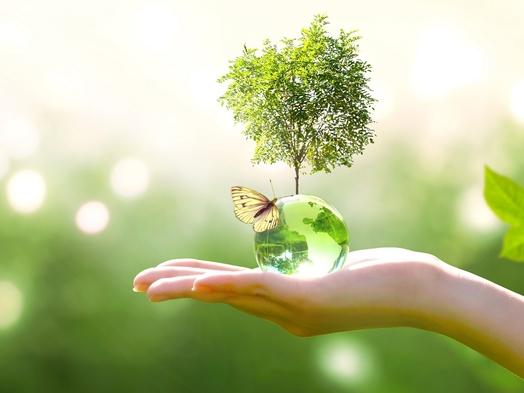 【2連泊以上】清掃なしで自然にやさしくECOに貢献♪エコプラン〜朝食付〜
