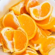 ◆朝食バイキング◆高知県産の新鮮な食材をご提供しています