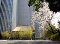エントランス(桜)
