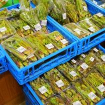 *[道の駅木曽福島]当館より車で約40分!地元の新鮮野菜を多く取り揃えております