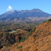 *[近隣風景/御嶽山(秋)]例年見頃は10月~11月頃