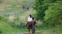 *[木曽馬の里]当館より車で約25分!乗馬や馬車体験など木曽馬と触れ合えるスポットです