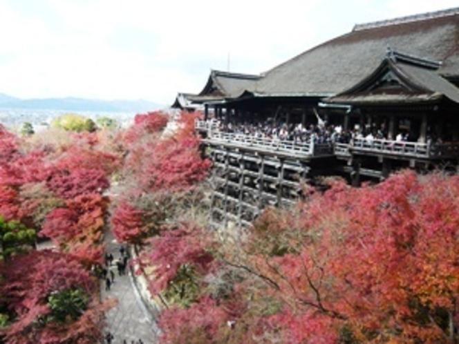 清水寺へ徒歩で行けます