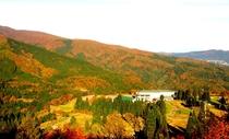 白鳥高原ホテル周辺の8色紅葉