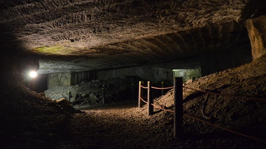 世界ジオパーク 伊豆GEO旅 室岩洞
