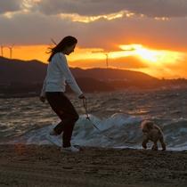 【慶野松原】日本の夕陽百選にも選定される美しい夕陽