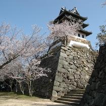 【洲本城跡】展望台からは大自然と海景の大パノラマが広がります。