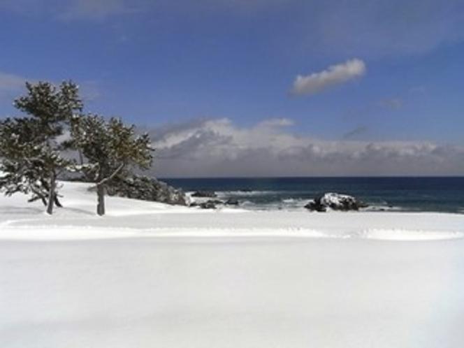 雪の種差海岸天然芝生地(イメージ)