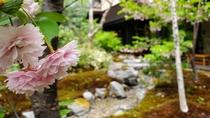 【中庭】春。花の色どり、小川のせせらぎ。