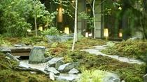 【中庭】夏。緑が生い茂る夏のひと時。