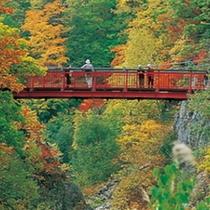 【定山渓散策路(二見公園・二見吊橋・かっぱ淵)】-人気の絶景スポット-