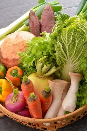 伊賀の地場野菜