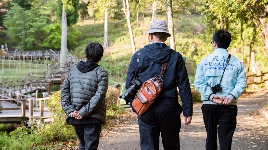 *【ヘルスウォーキング】旅の思い出に早朝散歩はいかがでしょうか?