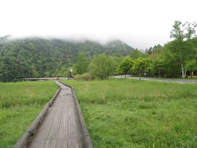 夏の湯ノ湖