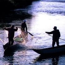 *『居繰網漁(いぐりあみりょう)』/三面川(みおもてがわ)の伝統鮭漁です。