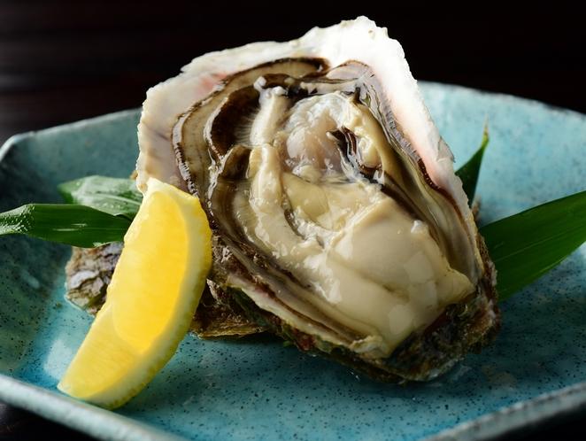 丹後産岩牡蠣