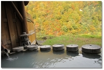 【露天石うすの湯】温泉がいつも湯舟からあふれ、循環や昇温をしていない本物の天然「生」温泉です