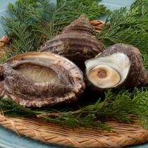 【料理/逸品】大分は魚介類の宝庫です♪
