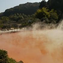 【周辺施設/レジャー】血の池地獄