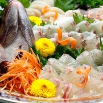 旬魚のお造り
