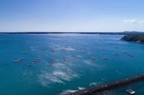 牡蠣の漁場