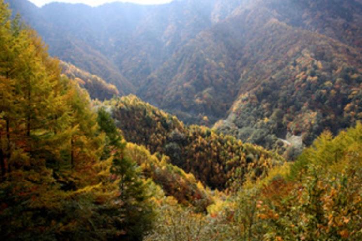広河原(白鳳渓谷)
