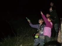 夜の森探検