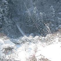 【周辺】冬景色