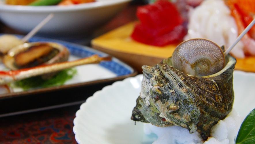 *サザエと魚介類