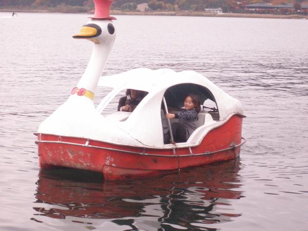 スワンボートも貸しています