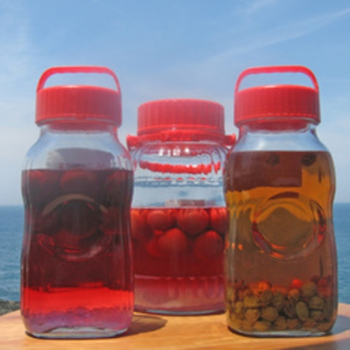 【自家製の果実酒】毎年愛情を込めて作る梅酒(またはスモモ酒)をお楽しみください。