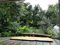 タイラ 部屋から庭を観る