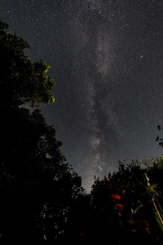 ハンディーヤ 、タイラの露天風呂から、綺麗な星空