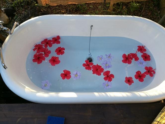 タイラ 露天風呂