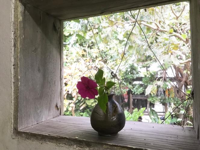 ハンディーヤ  トイレの小窓
