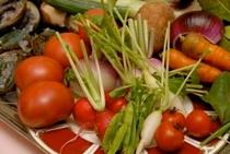 野菜各種写真
