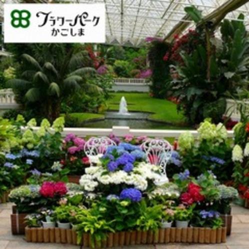 国内最大級のフラワーパーク。亜熱帯植物を中心に世界各地の植物が楽しめます♪