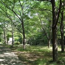 近隣の為松公園