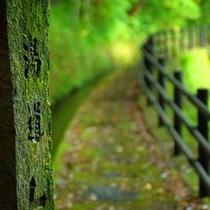 ◆風景◆湯道を散歩2