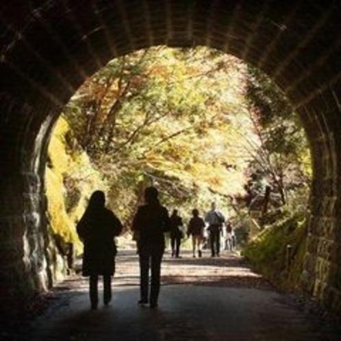 ◆天城トンネル◆散歩の風景