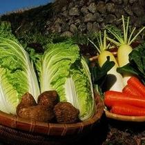◆お野菜◆白壁荘のお料理の主なお野菜は箱根西麓野菜をご用意しております