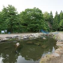 *[周辺施設(釣堀)]当館から徒歩2分。竿・エサのレンタルもあるため、手ぶらで魚釣りを楽しめます。