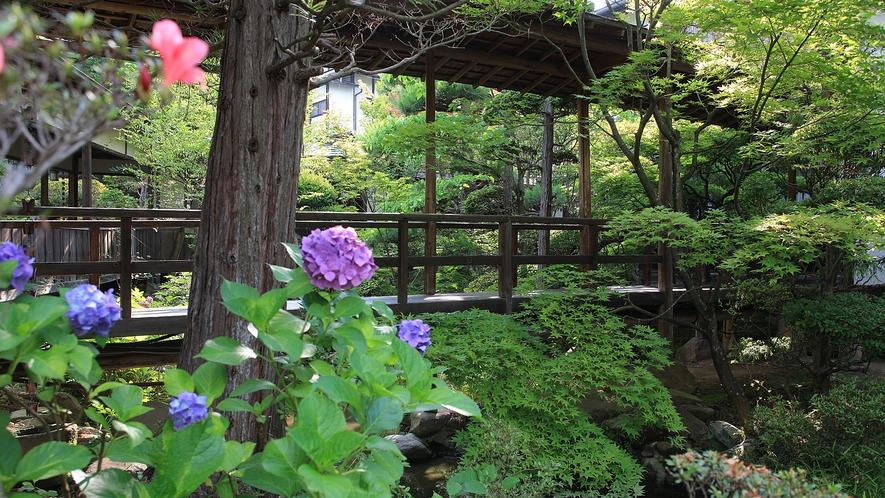6月の庭園には紫陽花が咲き誇ります