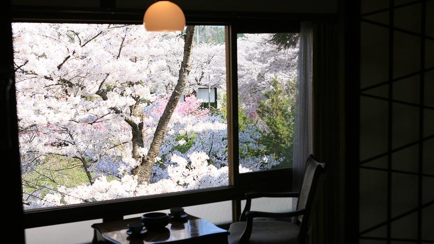 桜が見えるとっておきのお部屋がございます