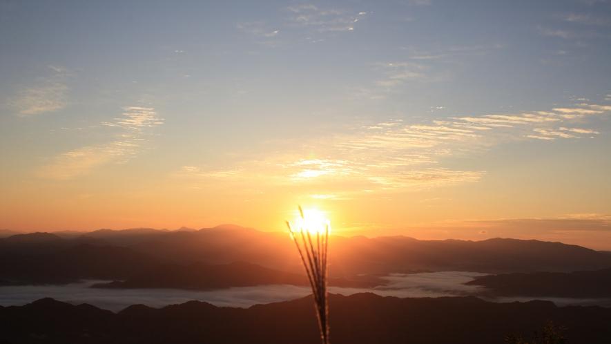 天空の朝ごはん ススキと日の出