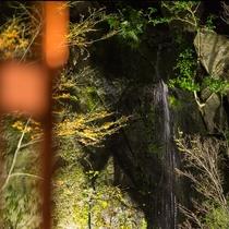 はなれ客室Cタイプ:スイート   浪漫閣月の花/部屋から望める滝